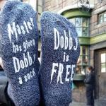 Master Has Given Dobby A Socks Casual Socks Men Women Letters Cotton Socks AB Sock Mismatched Socks - Blue One Size