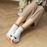 Toe Socks Female Cotton Summer Thin Section Duantong Toe Cartoon Puppy Absorbent Cotton Toe Socks - White One Size