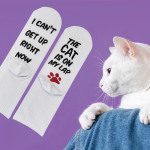 6 Pairs I CAN NOT GET UP RIGHT NOW THE CAT DOG IS ON MY LAP Novelty Socks - Cat One Size
